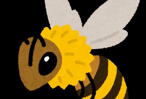 はちみつを集める蜂の種類は?